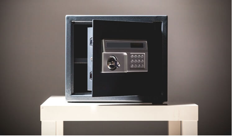 Fireproof safes are made for a reason.