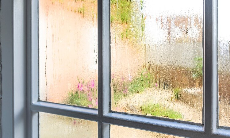 How To Remove Window Films In Your House