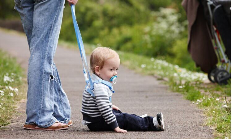 The-7-Best-Child-Safety-Harnesses