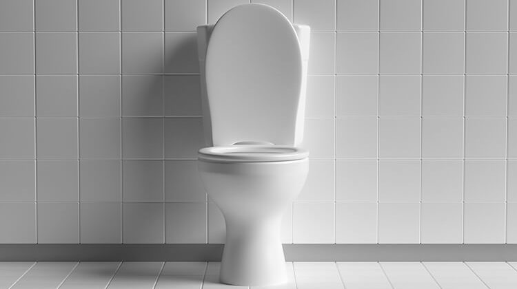 The 7 Best Raised Toilet Seats For Every Comfort Room