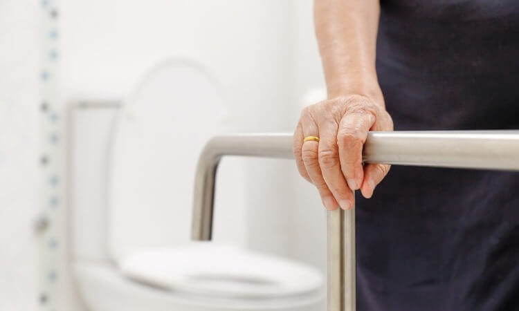 The 7 Best Rated Suction Grab Bars