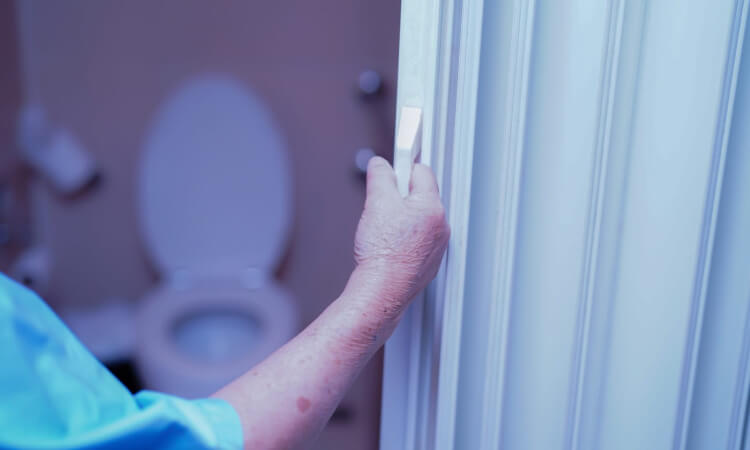 The 7 Best Toilet Safety Frames For Support