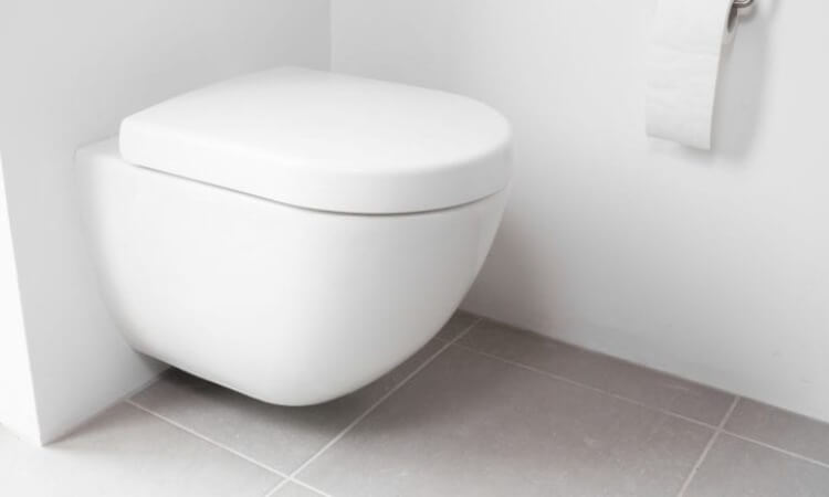 The 7 Best Wall-Hung Toilet Frames