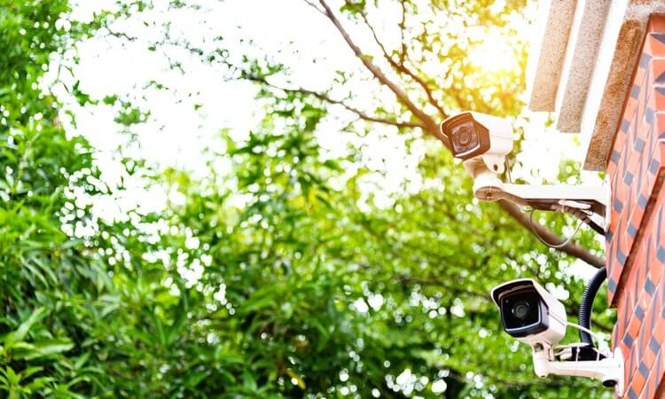 What's The Difference Between Surveillance Cameras And Security Cameras?